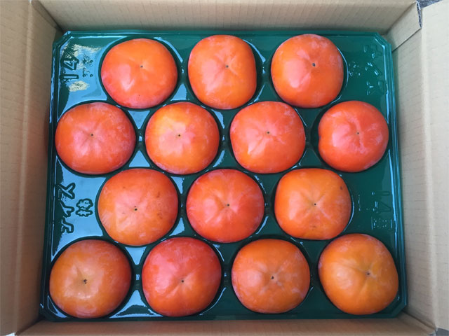 松久農園の富有柿